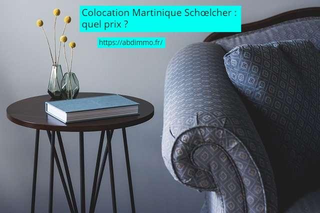 colocation Martinique Schoelcher prix