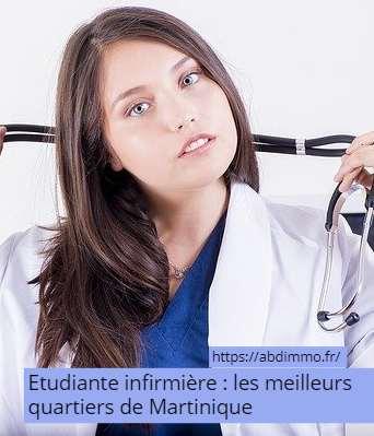 meilleurs quartiers de Martinique étudiante infirmière
