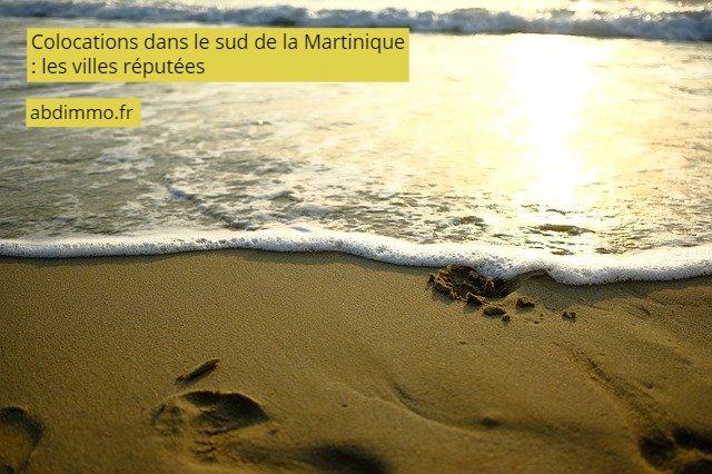 colocations dans le sud de la Martinique villes réputées