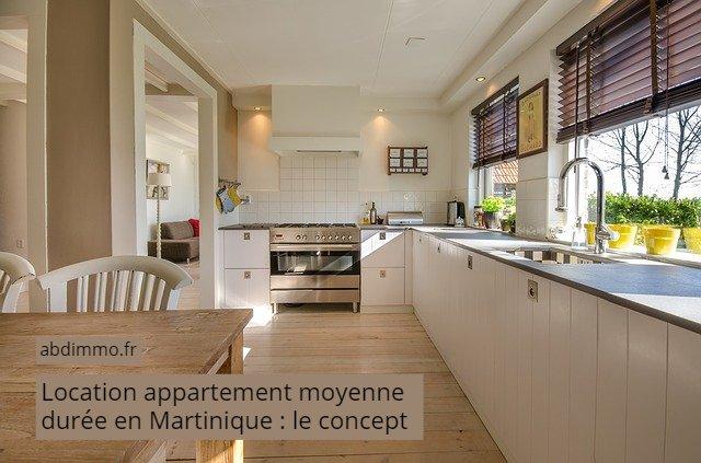 location appartement moyenne durée martinique