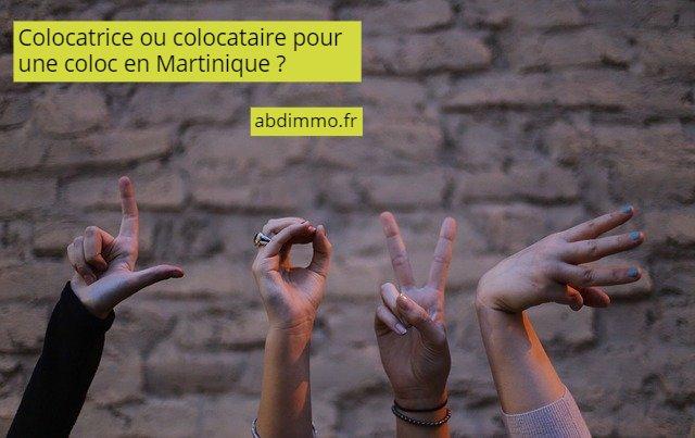 colocataire ou colocatrice pour une coloc en Martinique