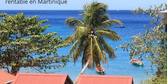 investissement locatif sûr et rentable Martinique